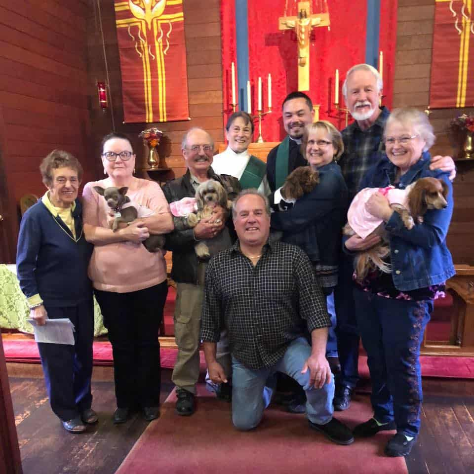 St. Francis Day Animal Blessing 2018